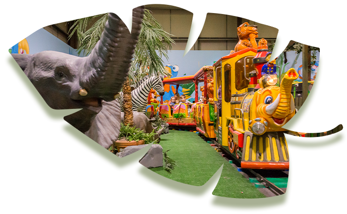 Jungleland-Train